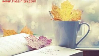 Photo of عکس های عاشقانه _۱