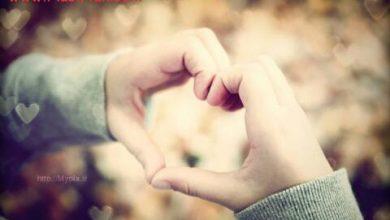 عشق و زندگی