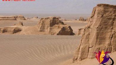تصویر از گندم بریان گرمترین نقطه زمین + تصاویر