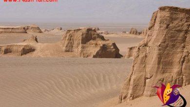 Photo of گندم بریان گرمترین نقطه زمین + تصاویر