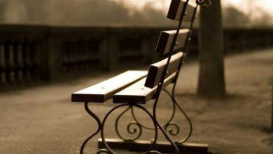 """Photo of صندلیت را کنار صندلیم بگذار ! همنشینی با تو یعنی """" تعطیلی رسمی تمام دردها """""""