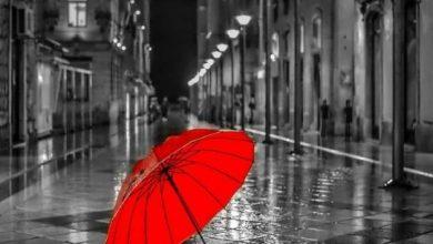 تصویر از چرا فرار ؟ چرا چتر ؟ تنها آدم های آهنی در باران زنگ می زنند !