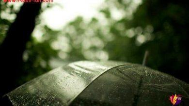 بر سرش چتر گرفتم ، دیدم او خودش باران است !