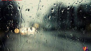 Photo of کنار پنجره خاطرات عجیب می چسبد ، چای و باران !
