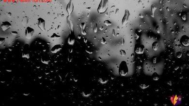 تصویر از باران کمی آهسته تر ، اینجا کسی در خانه نیست من هستم و تنهایی و دردی که نامش زندگیست !