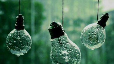 تصویر از باران که می بارد ، دلت را محکم بچسب  زیر باران ، دل به اشاره ای می رود