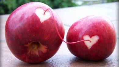 نترس حوا سیب را با عشق گاز بزن آدم بی عشق   لیاقت بهشت ندارد