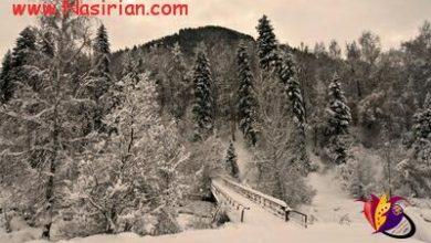 تصویر از درکلبه اى که نگاه تو فانوسش باشدپشت درش هزاران زمستان مى مانم