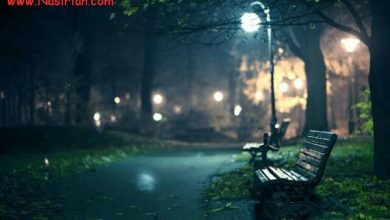 بیادتم حتی اگر قرار باشد شبی بی چراغ در حسرت یافتنت تمام دنیا را قدم بزنم