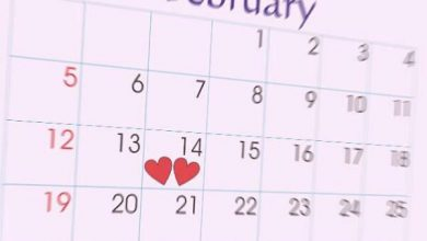 Photo of صفحه های تقویم مرا یاد گذر زمان می اندازند  نمی دانم پس کی زندگی شروع می شود ؟