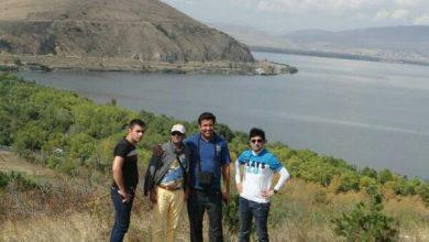 تصویر از جنگل و دریاچه سوان
