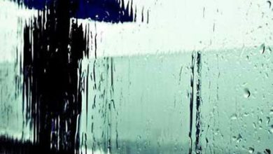 426217617 177566 1 390x220 - دلم باران میخواهد