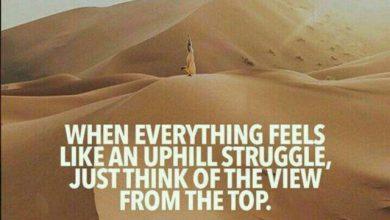 به منظره ی اون بالا فکر کن