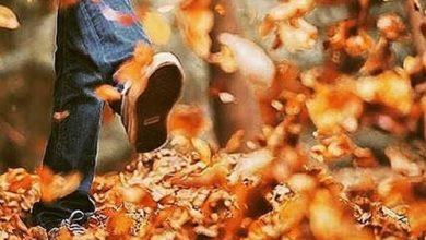 روزای اول پاییز